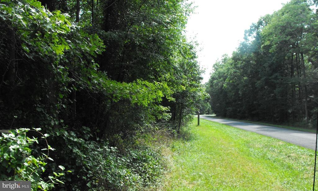 00 Pine Pitch Road Harrington, DE - Image 4