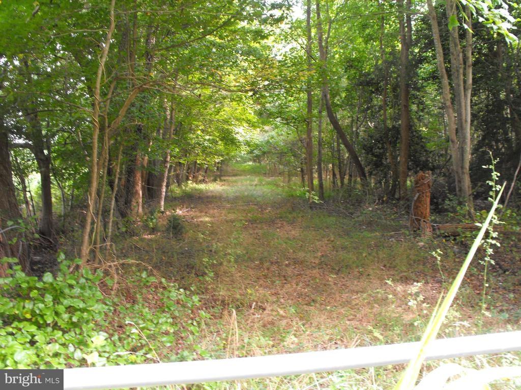 00 Pine Pitch Road Harrington, DE - Image 5