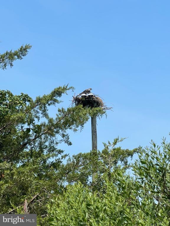 Lot 514 Beach Plum Drive Milford, DE - Image 8